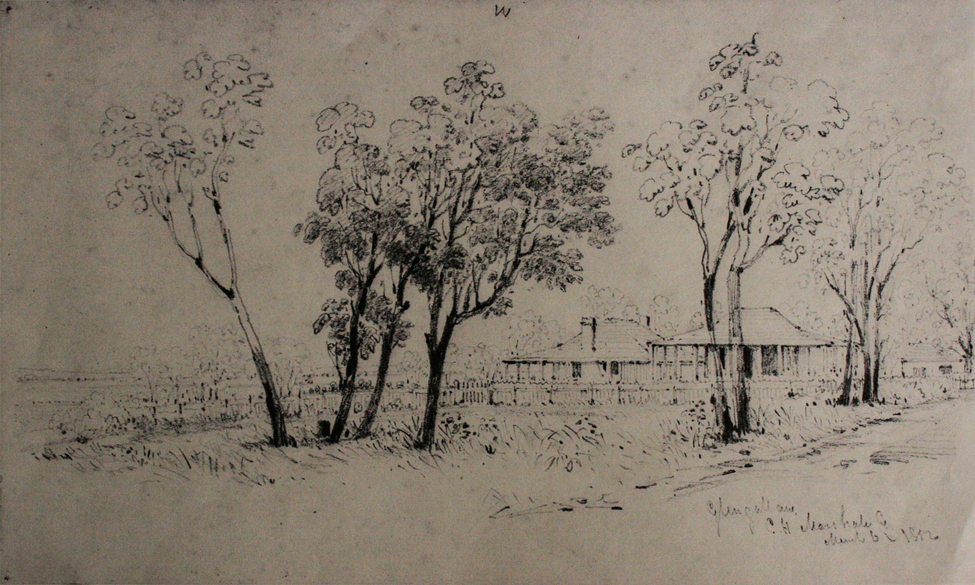 1852 C Martens Sketch